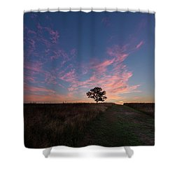 Sunrise Tree 2016 Square Shower Curtain by Bill Wakeley