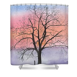 Sunrise Walnut Tree 2 Watercolor Painting Shower Curtain