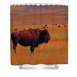 Sunrise Watch  Shower Curtain