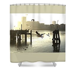 Sunrise With Seagulls Shower Curtain