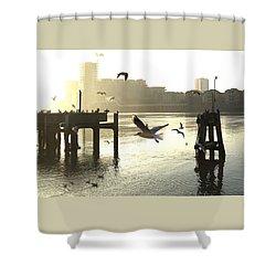 Sunrise With Seagulls Shower Curtain
