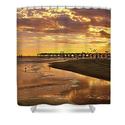 Sunset And Gulls Shower Curtain by Kathy Baccari