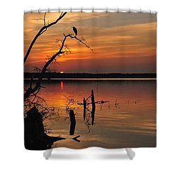 Shower Curtain featuring the photograph Sunset And Heron by Angel Cher
