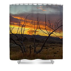 Sunset And Petrified Tree Shower Curtain by David Gn