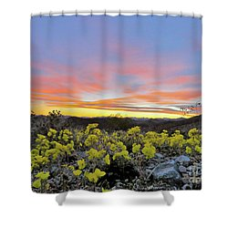 Sunset And Primrose Shower Curtain by Michele Penner