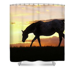 Sunset Appy Shower Curtain