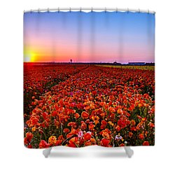 Sunset At Nuriot Field Shower Curtain