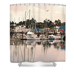 Sunset At The Marina Shower Curtain by Diane Schuster