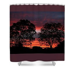 Sunset Behind Two Trees Shower Curtain by Sheila Brown