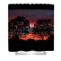 Sunset Behind Two Trees Shower Curtain