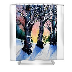 Sunset Birches On The Rise Shower Curtain by Kathy Braud