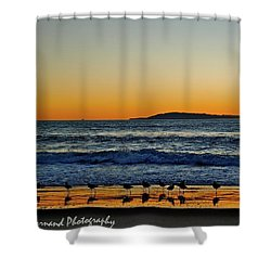 Sunset Bird Reflections Shower Curtain