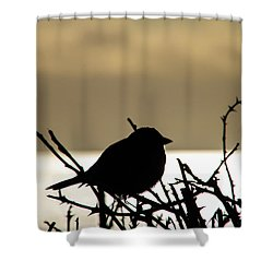 Sunset Bird Silhouette Shower Curtain