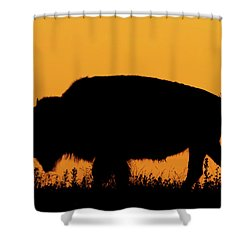 Sunset Bison 2 Shower Curtain