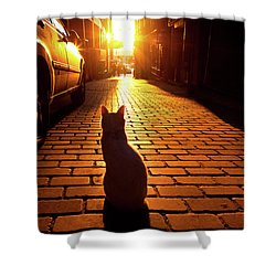 Sunset Cat Shower Curtain