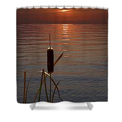 Sunset Cattail Shower Curtain by Judy Johnson