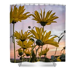 Sunset Delight Shower Curtain