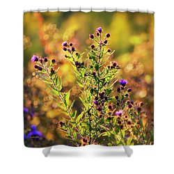 Shower Curtain featuring the photograph Sunset Flowers by Christina Rollo