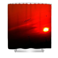 Sunset Geese Leaving Disappearing City - 0814  Shower Curtain