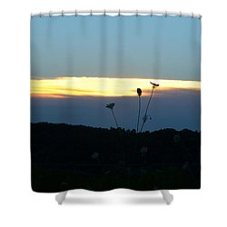 Shower Curtain featuring the digital art Sunset Gold Stripe Queen Anne by Jana Russon