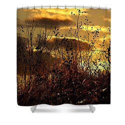 Sunset Grasses Shower Curtain by Julie Hamilton