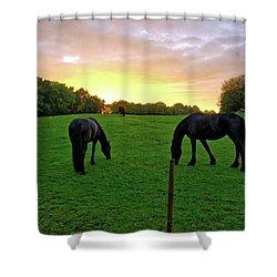 Sunset Horses Shower Curtain