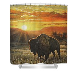Sunset In Bison Country Shower Curtain