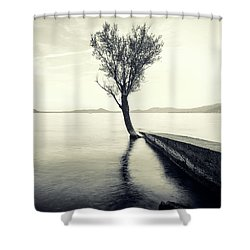 Sunset Landscape With A Tree In The Background Immersed In The L Shower Curtain