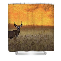 Shower Curtain featuring the photograph Sunset Lover by Kadek Susanto