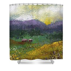 Sunset Meadow Shower Curtain by David Patterson