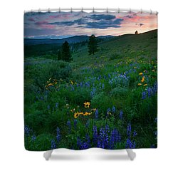 Sunset Meadow Trail Shower Curtain by Mike  Dawson