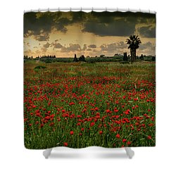 Sunset On A Poppies Field Shower Curtain