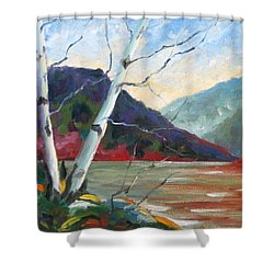 Sunset On The Lake Shower Curtain by Richard T Pranke