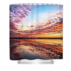 Sunset On The Pacific Flyway Shower Curtain