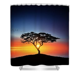 Sunset On The Tree Shower Curtain