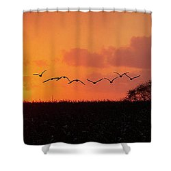 Sunset Over Easy Shower Curtain by Sue Stefanowicz