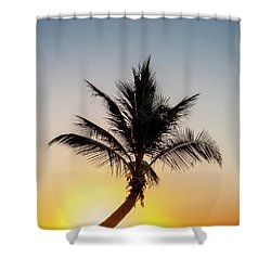 Shower Curtain featuring the photograph Sunset Palm by Az Jackson