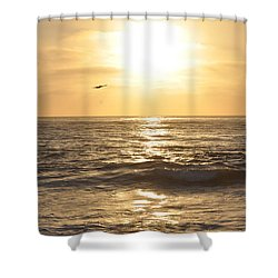 Sunset Pelican Silhouette Shower Curtain