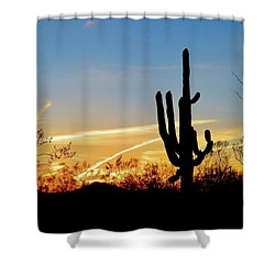 Sunset Saguaro In The Spring Shower Curtain