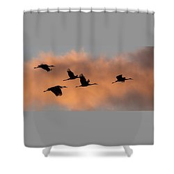 Sunset Sandhill's Shower Curtain