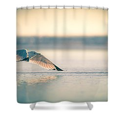 Shower Curtain featuring the photograph Sunset Seagull Takeoffs by T Brian Jones
