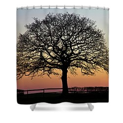 Shower Curtain featuring the photograph Sunset Silhouette by Clare Bambers