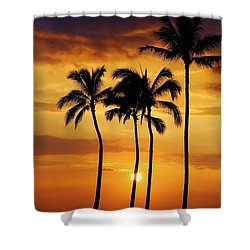 Sunset Silhouette Shower Curtain by Craig Wood
