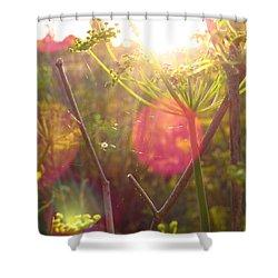 Sunset Spider's Web Shower Curtain