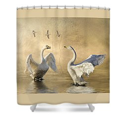 Shower Curtain featuring the photograph Sunset Squabble by Brian Tarr