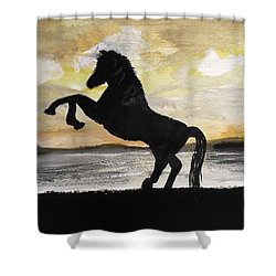 Sunset Stallion Shower Curtain by Carole Robins