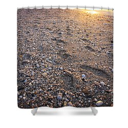 Shower Curtain featuring the photograph Sunset Step by Paul Cammarata
