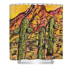 Desert Sunset Sunrise  Shower Curtain