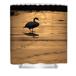 Shower Curtain featuring the photograph Sunset Swan by Richard Bryce and Family