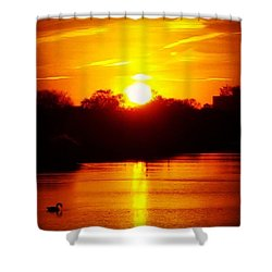 Sunset Swan Shower Curtain